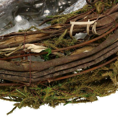 Wijnstok en mos plantenbak 35cm x 20cm