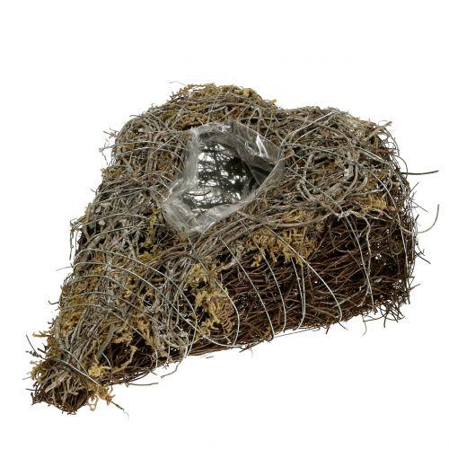 Plantenhart gemaakt van wijnstokken en korstmossen natuurlijk 25 x 19 cm