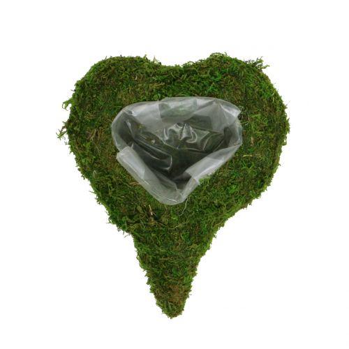 Plant hart mos 23cm x 19cm