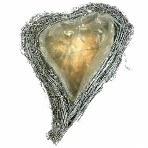 Plant hart takken wit gewassen 40cm x 30cm