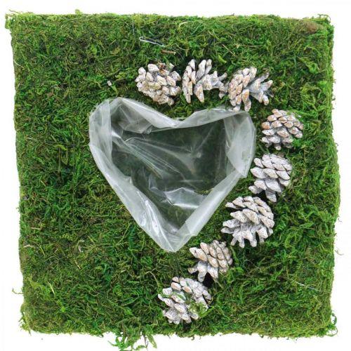 Plantenkussen hart mos en kegels, wit gewassen 25 × 25cm
