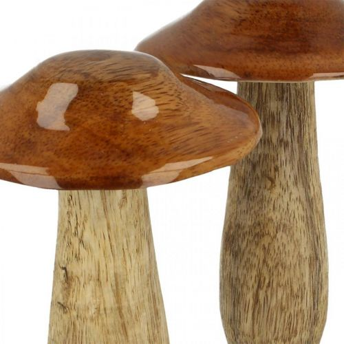 Paddenstoel mangohout bruin, natuur tafeldecoratie herfst Ø9cm H12cm 2st