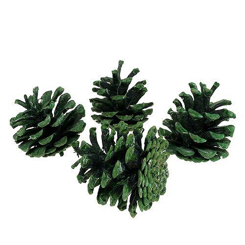 Zwarte dennenappels groen mat 5-7cm 1kg
