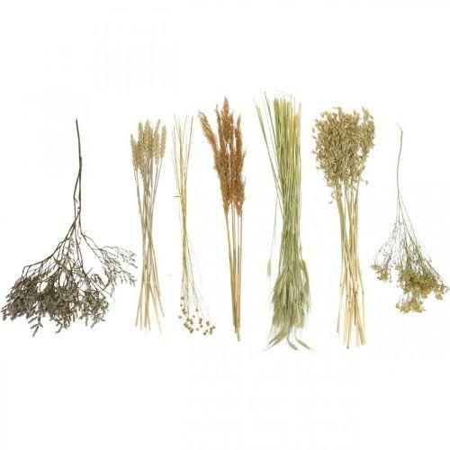 Droogbloemen DIY set voor droogboeket natuur 60cm