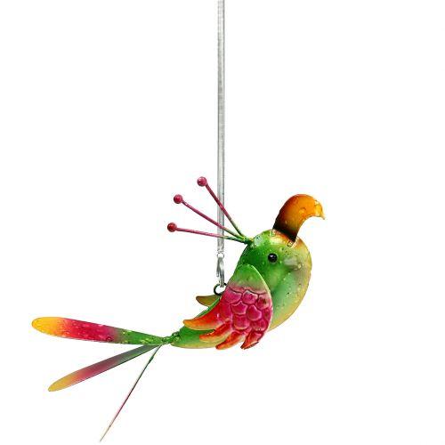 Vogel om groen, roze, oranje 18,5 cm op te hangen