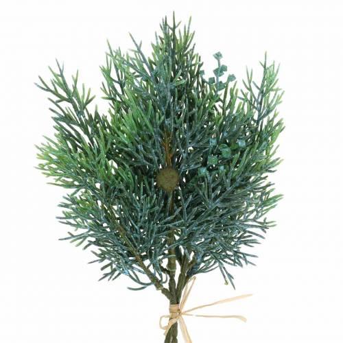 Siertak jeneverbes met kegels groen, blauw gewassen 25cm 2st