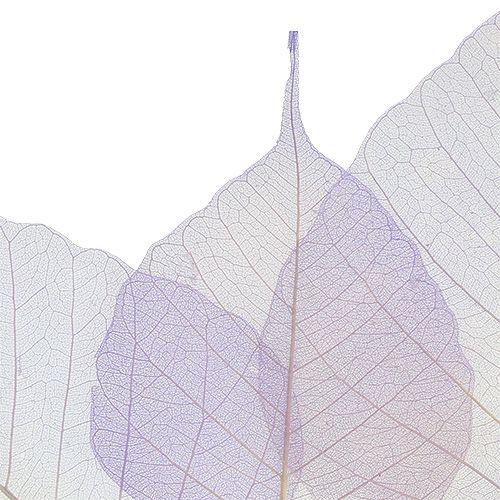 Wilgenbladeren skelet licht violet 200st.