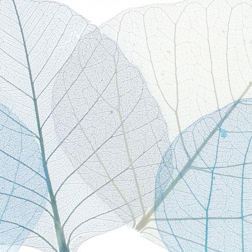 Wilgenbladeren geskeletteerd blauw, grijs assorti 200st