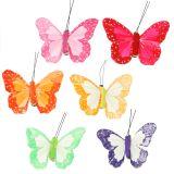 Veervlinders op de clip kleurrijk 7cm 12st
