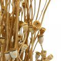 Gedroogde bloemen klaproos capsules natuurlijk gedroogd wild drogen decoratie bundel 100g